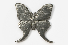 #571 - Luna Moth Antiqued Pewter Pin