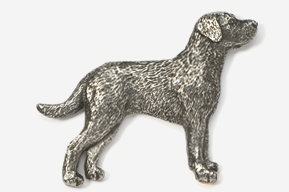 #869 - Chesapeake Antiqued Pewter Pin