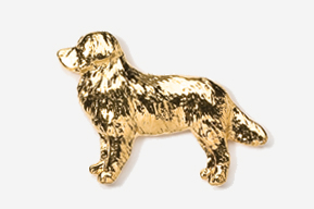 #872G - Bernese Mountain Dog 24K Gold Plated Pin